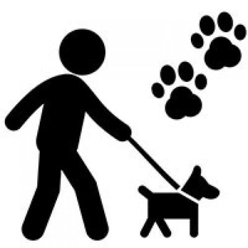 Hayvanseverlere Özel Hediyeler
